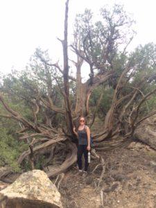 Rim Trail - Amy