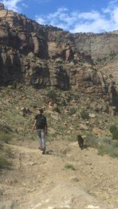 Rim Trail - Mark
