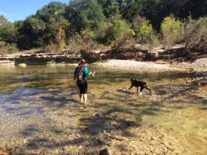 Bull Creek 2