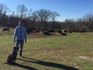 Ranch 7
