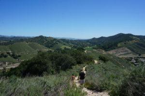 Hike 7